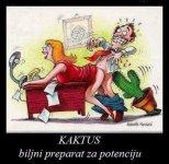 FB_IMG_1514314181571.jpg